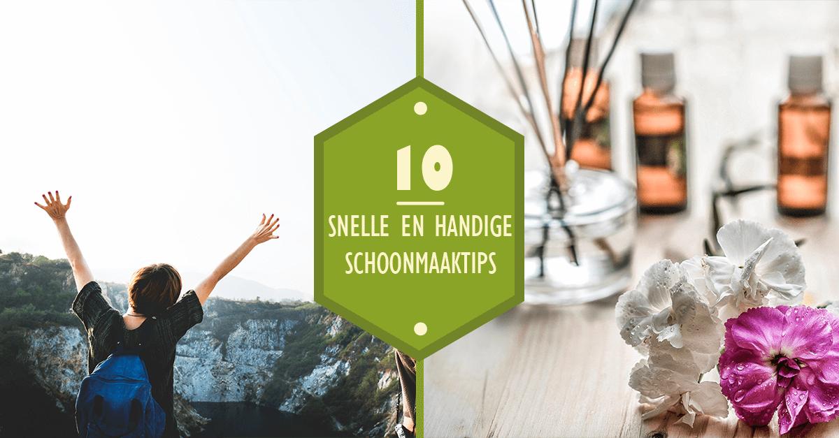 Kalk In De Wc Pot.10 Snelle En Handige Schoonmaaktips Blog Huiscleaning